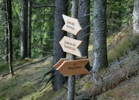 Bei dieser Wegkreuzung beim Abstieg vom Normalweg oder der Teufelsbrücke kommend Richtung Wegscheid gehen